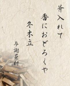 Haiku-3