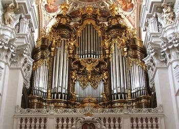 Organ_Back
